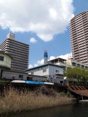 skytree-b001_50.jpg